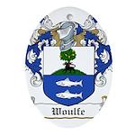 Woulfe-Irish-9.jpg Ornament (Oval)