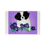 Japanese Chin Pup Rectangle Magnet (100 pack)