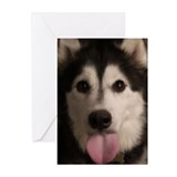 Aurora Yappy Birthday Cards