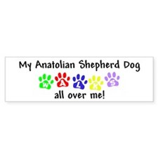 Anatolian Shepherd Walks Bumper Bumper Sticker