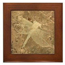 Dragonfly Fossil Stone Art Framed Tile