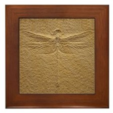 Dragonfly Fossil Art Framed Tile