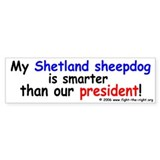 Shelties are smart too -- Bumper Bumper Sticker