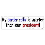 Border Collies are smart -- Bumper Car Sticker