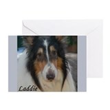 Laddie Greeting Cards (Pk of 10)