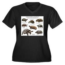 Tortoises of North & South America Women's Plus Si