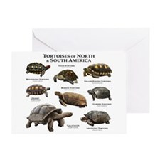 Tortoises of North & South America Greeting Card
