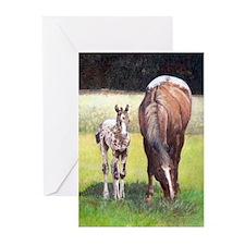 Appaloosa Mare Foal Portrait Greeting Cards (Pk of