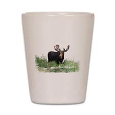 New Hampshire Moose Shot Glass