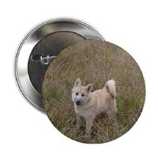 Buhunds Button