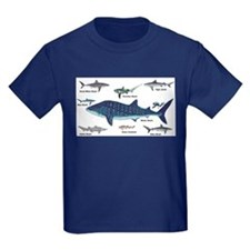 Shark Types T-Shirt