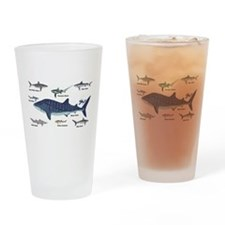 Shark Types Drinking Glass