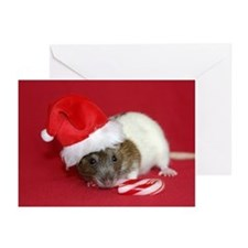 Santa Magrat Greeting Cards (Pk of 10)