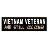 VIETNAM VET KICKING