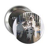 "Harl dad with sons 2.25"" Button (10 pack)"
