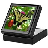 1581 Tiger Swallowtail Butterfly Keepsake Box