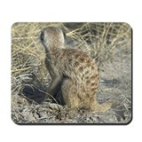 Meerkat's Back Mousepad