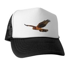 Harrier Trucker Hat