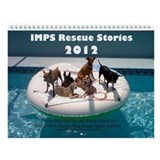IMPS 2013 Wall Calendar