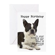 Boston Terrier Birthday Card