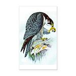 Falcon Rectangle Car Magnet