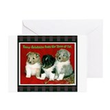 Sheltie Pups Holiday Greeting Greeting Cards (Pack