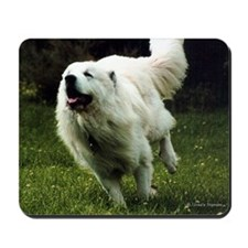 Great Pyrenees Action<br>Mousepad