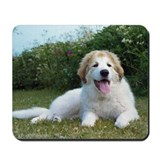Great Pyrenees Puppy&lt;br&gt;Mousepad