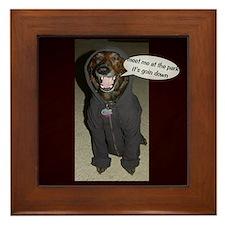 Dog in the Hoody Framed Tile