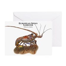 European Spiny Lobster Greeting Cards (Pk of 20)