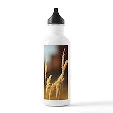 Wheat Grass Water Bottle