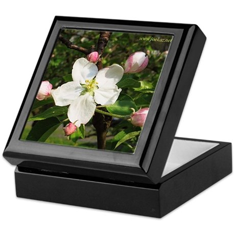 Apple Blossom Keepsake Box