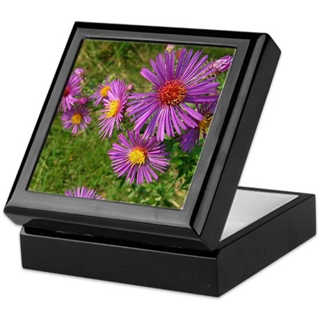 New England Aster Keepsake Box