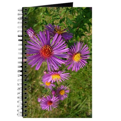 New England Aster Journal