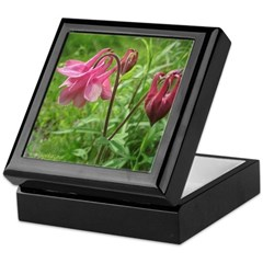 Columbine Keepsake Box