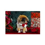 Pekingese Christmas Pumpkin Rectangle Magnet (10 p