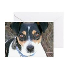 Boo the Rat Terrier Greeting Cards (Pk of 10)