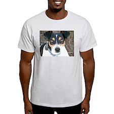 Boo the Rat Terrier Ash Grey T-Shirt