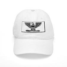 USPHS-CAPT-Nametag-White.gif Baseball Cap