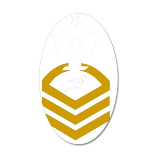 USCG-Rank-PACS 35x21 Oval Wall Decal