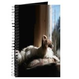 Papillon in Window Journal