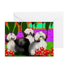 print 6                              Greeting Card