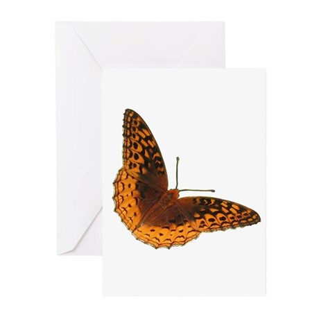Butterfly Greeting Cards (6)