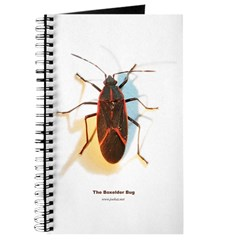 Boxelder Bug Journal