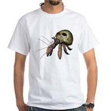Hermit Crab in Skull Shirt