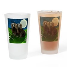 boykin sp moon Drinking Glass