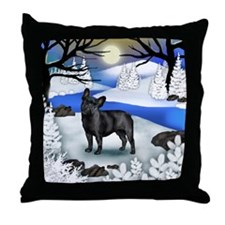 fr fb copy Throw Pillow