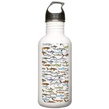 school of sharks 2V3 Water Bottle