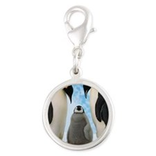 penguin_power Silver Round Charm