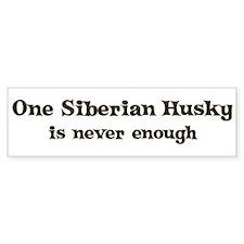One Siberian Husky Bumper Bumper Sticker